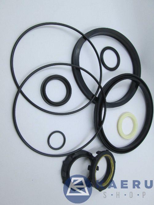 Seal kit (Dia 125) (A23,A24125,C5525)