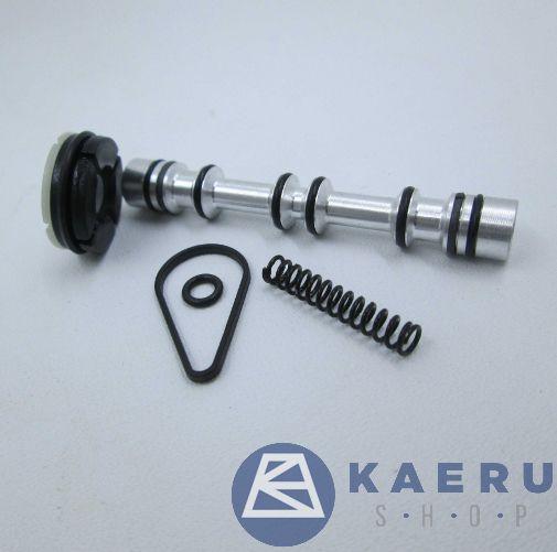 Seal kit (DS254SR60)